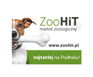banery ZOOHIT